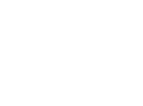 INTEL UNITS & FUSION CENTERS  Total Tips/Leads/SARS Platform fusion